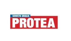 Protea Urban News